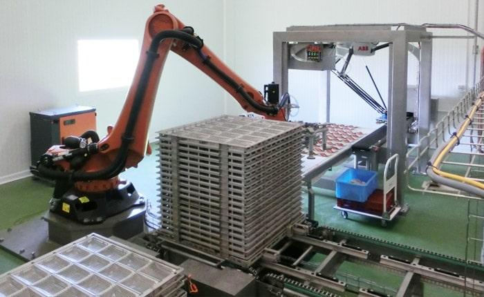 Conserverie - Enclayage déclayage robotisé - Guelt