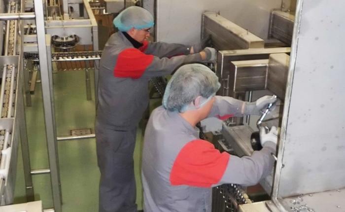 Guelt Techni-Services : assistance mise en service d'un four de cuisson
