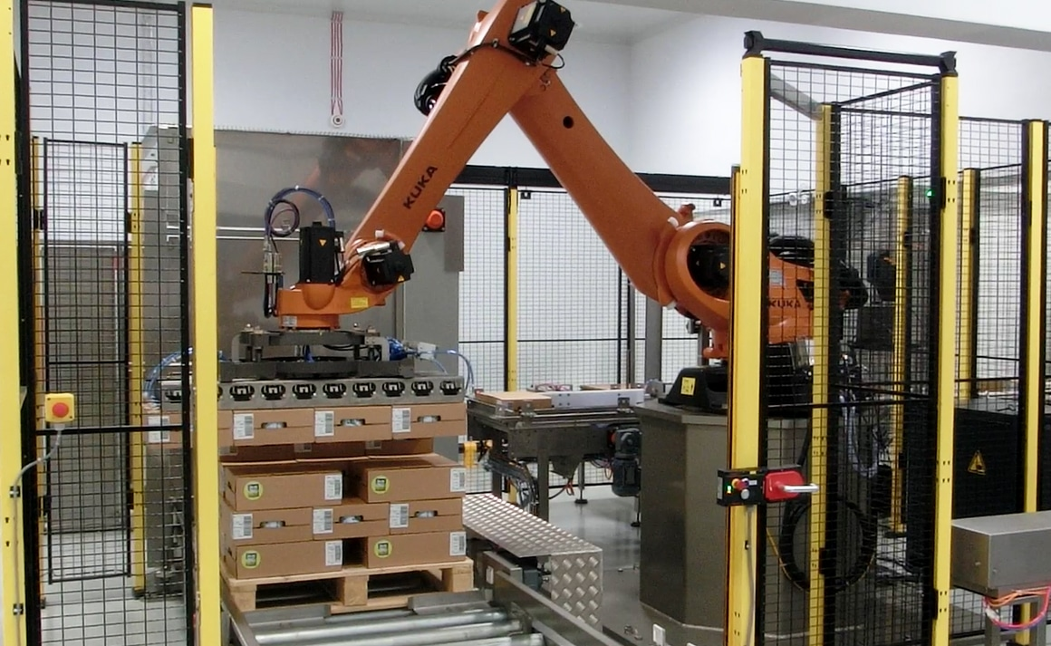 Poly-articulated robotic palletizers - Guelt