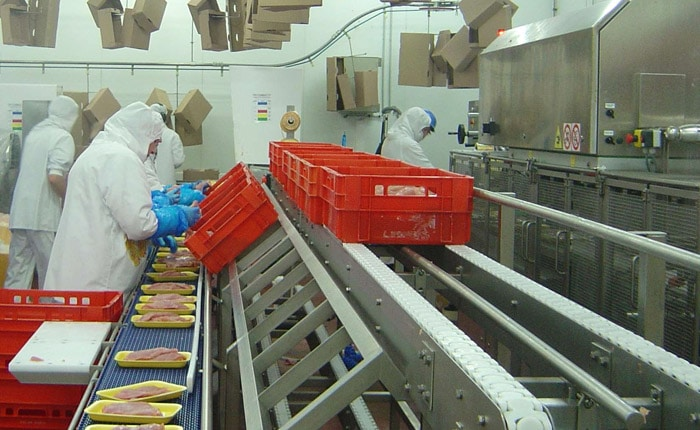Workstations - Poultry packaging line - Guelt