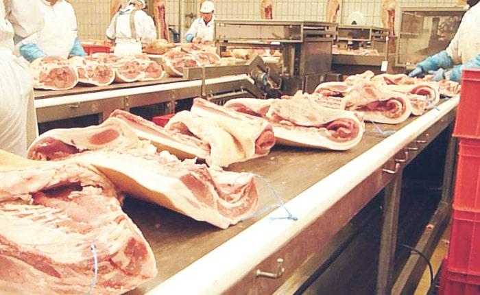 Ligne de découpe viande - Guelt
