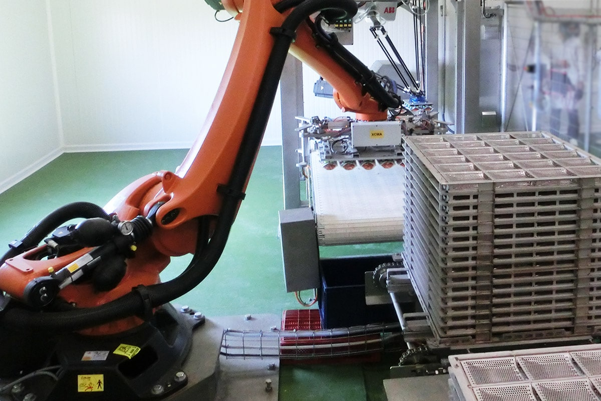 Canning - Robotized retort rack loader and unloader - Guelt