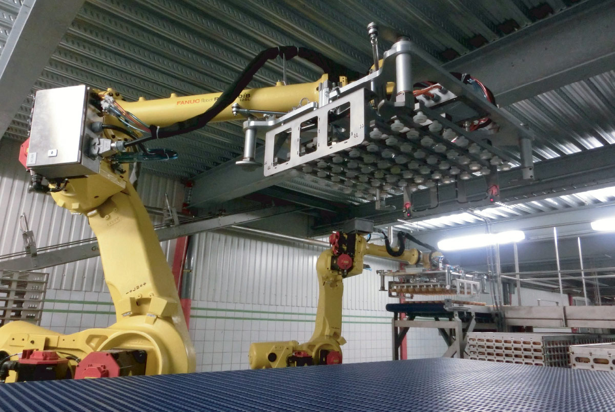Guelt Canning - Canning and declaying machine robotic potting machines